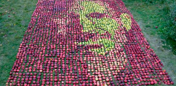 sj_portrait_made_3500_apples_0