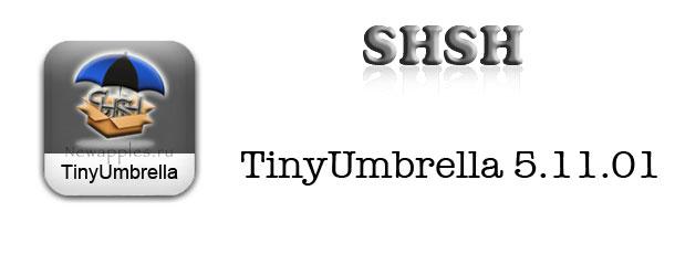 tinyumbrella_5_11_01_0